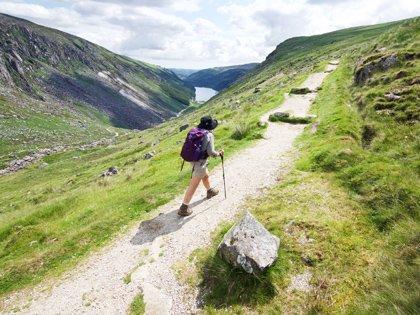 wilderness-ireland