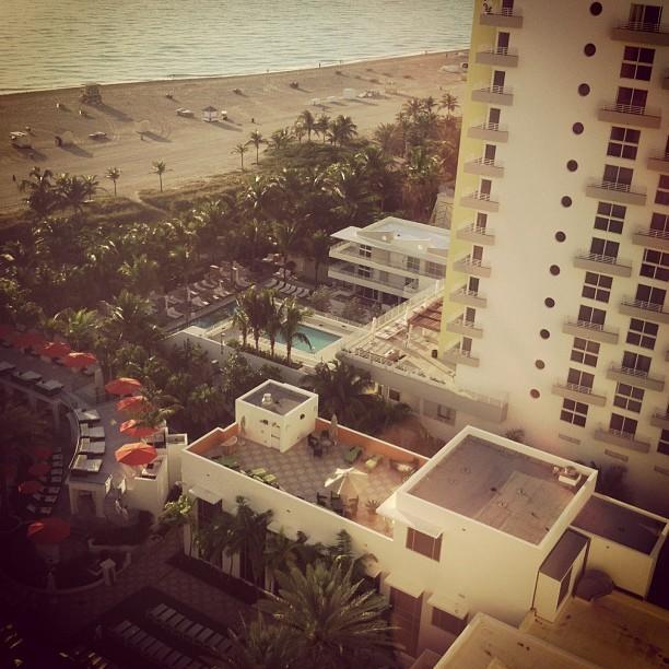 Good morning Miami Beach. (at Loews Miami Beach Hotel)