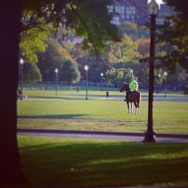 Horse Police (Taken with  Instagram  at Boston Common)