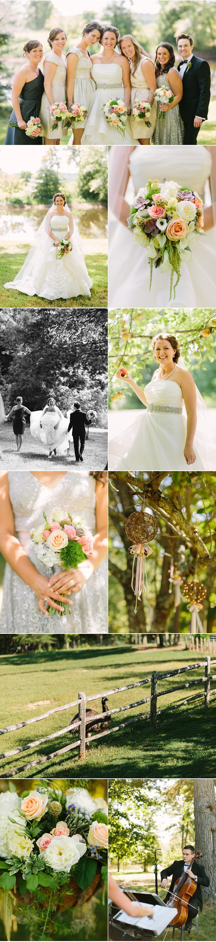 Laurelwood Farm Wedding