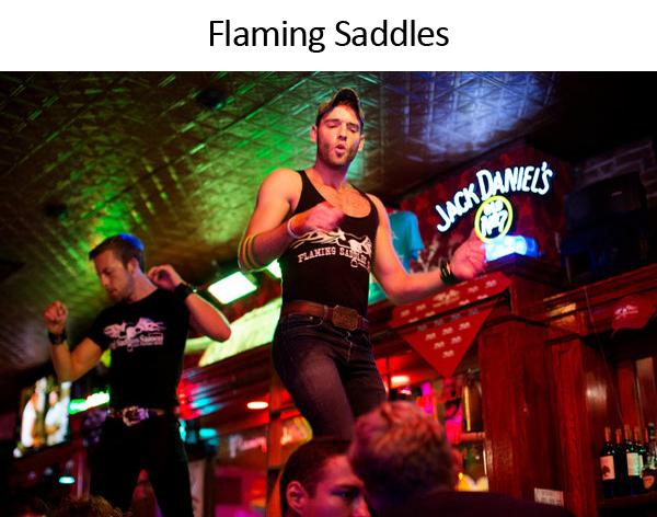 flamingsaddles.jpg