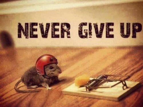 Funny-Short-Motivational-Quotes1.jpg