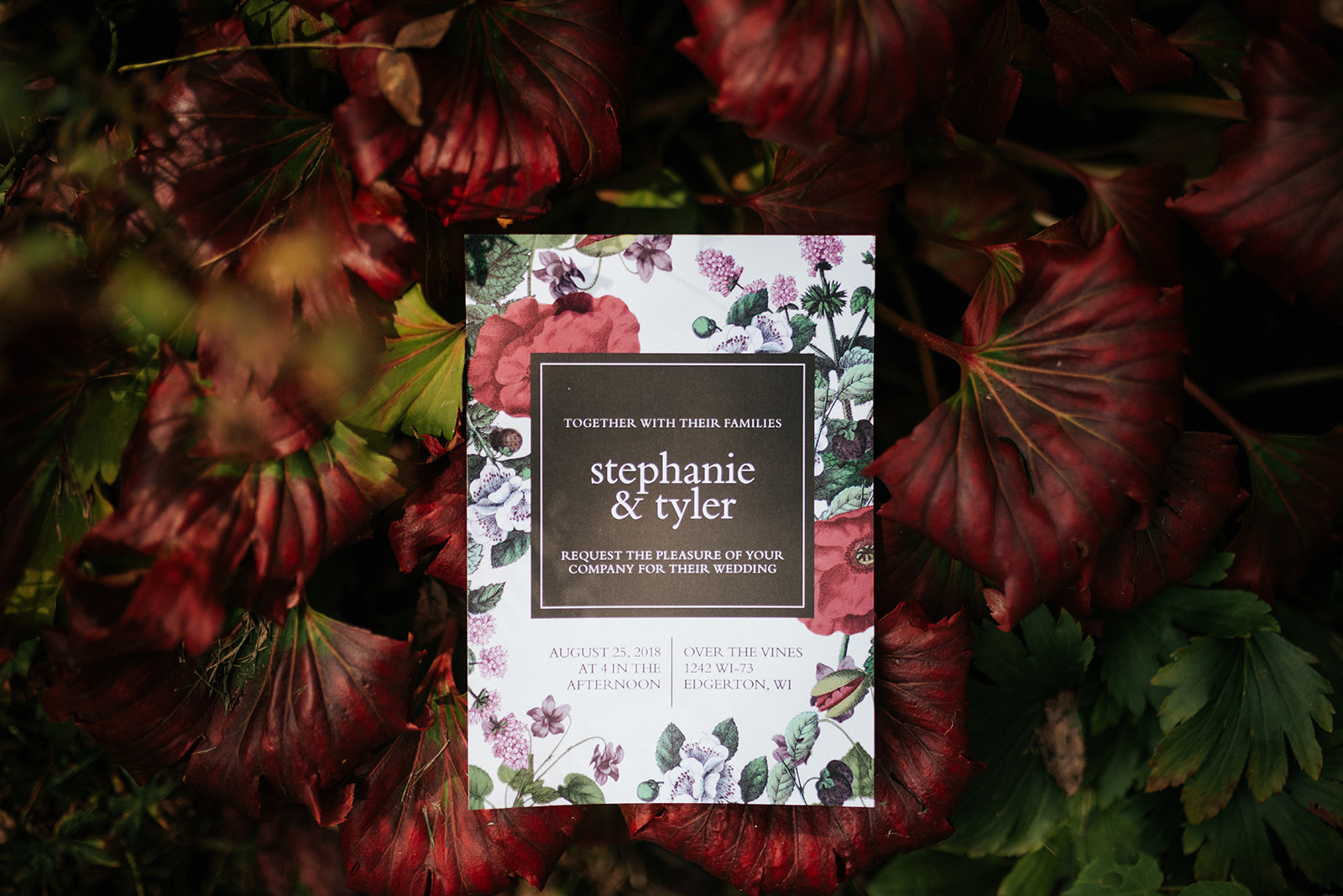 overthevineswisconsinwedding_0002.jpg