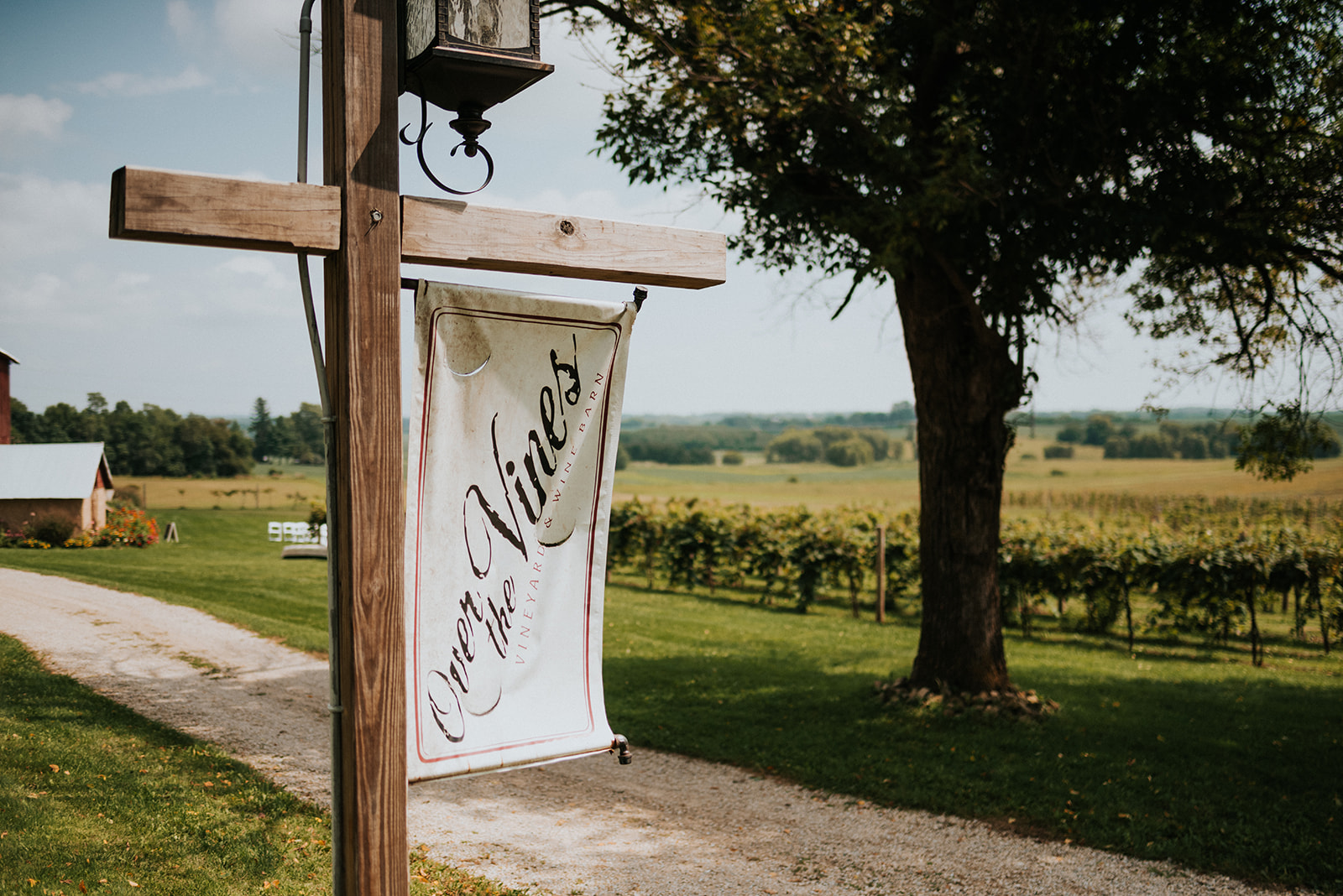 overthevineswisconsinwedding_0001.jpg