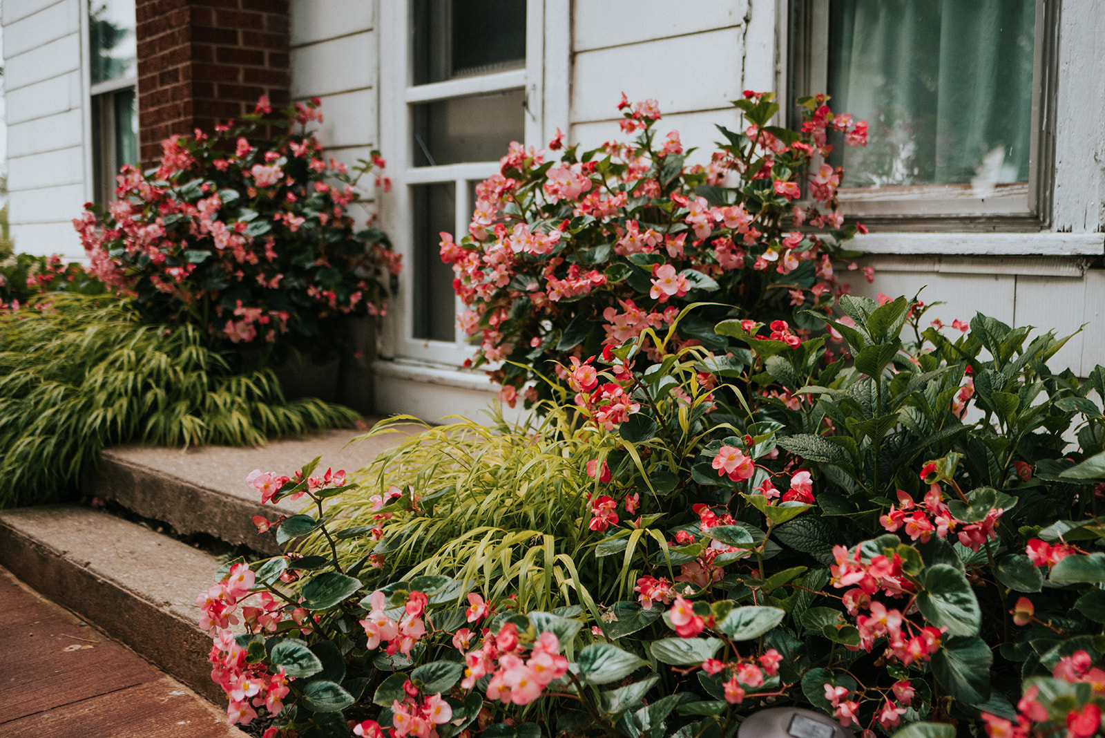 overthevineswisconsinwedding_0012.jpg