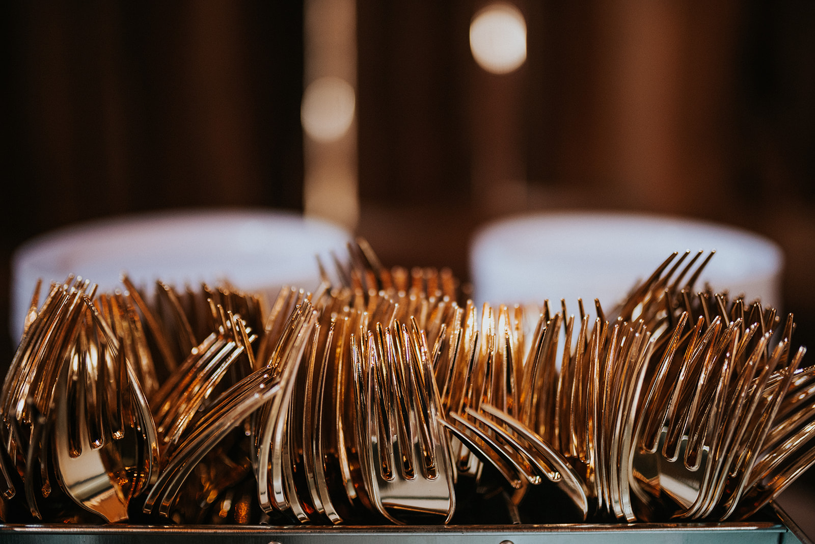 overthevineswisconsinwedding_1054.jpg