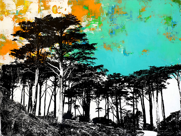 presidiotrees.jpg