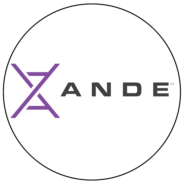 ANDE Website.png