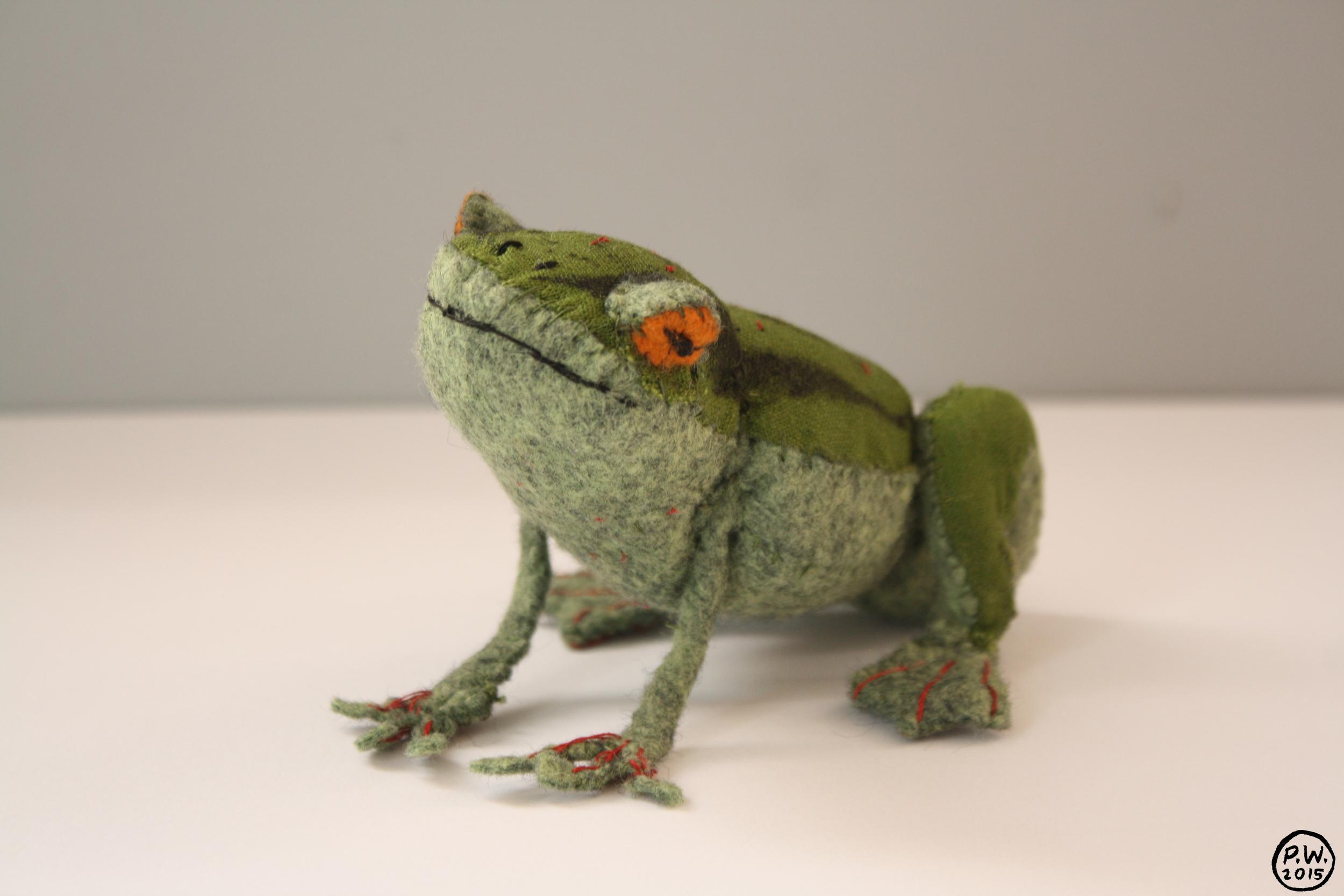 PWfrog3