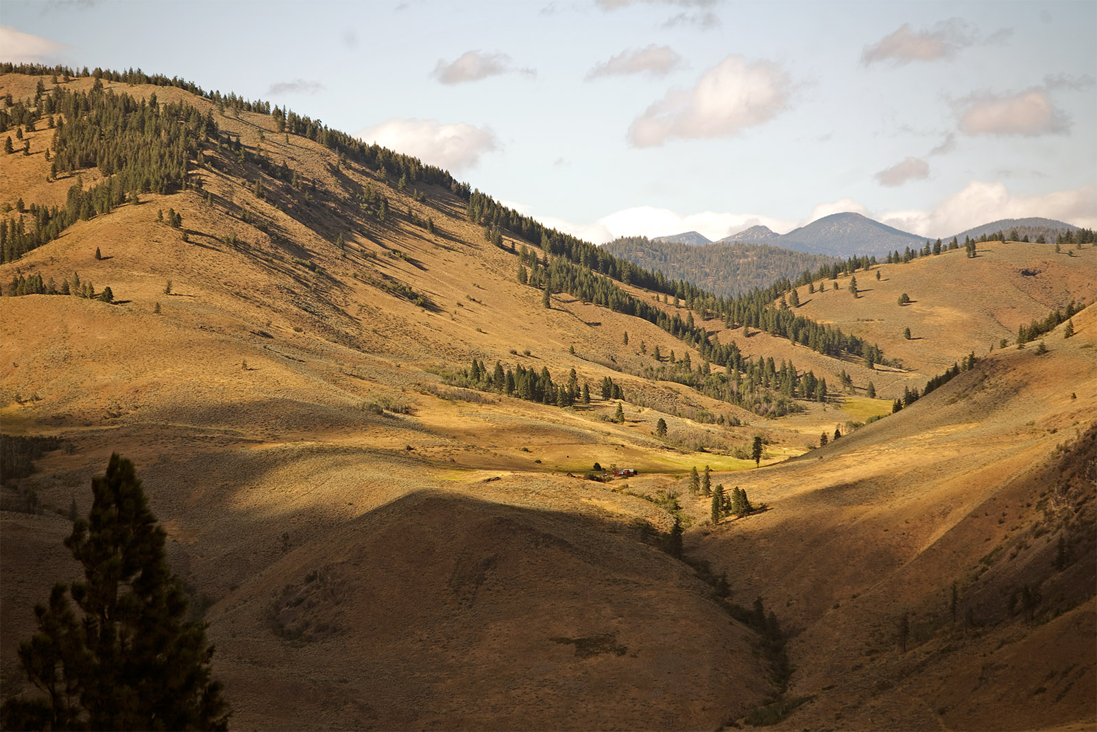 Methow_Valley.jpg