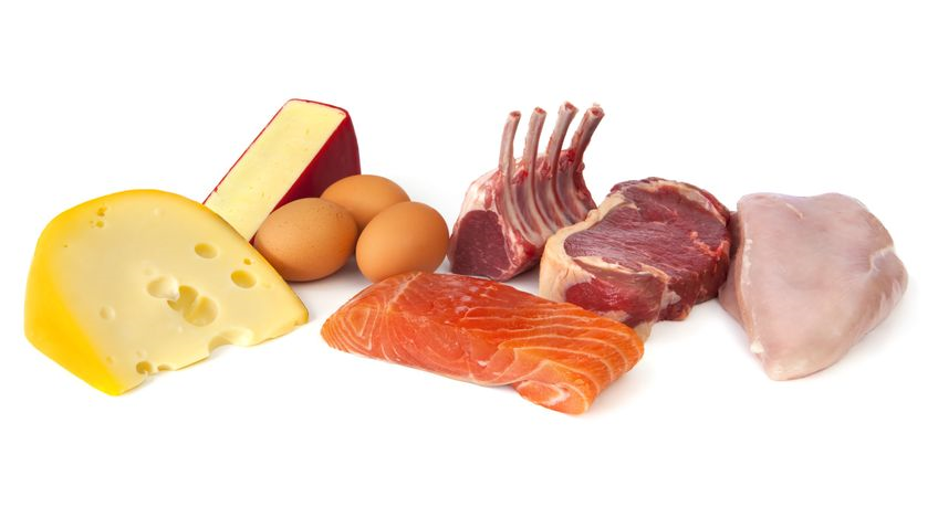 High protein foods, steak, chicken, eggs, cheese, lamb chops - Ultimate Health Personal Trainin Center - Holywood, CA