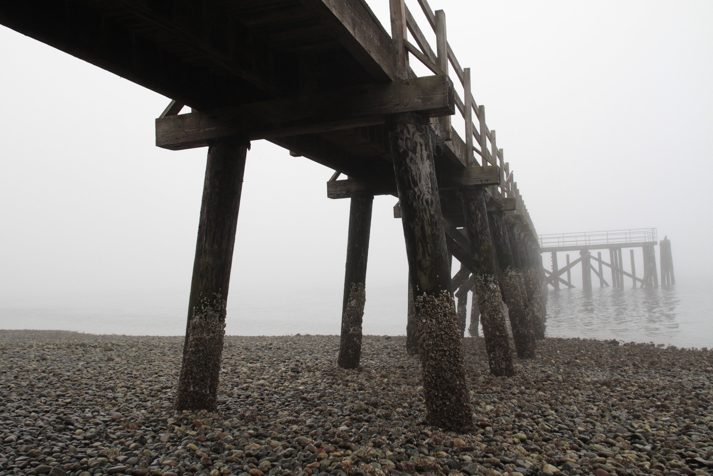 Bainbridge Island's Point White Pier, shrouded in October fog. October 2018.