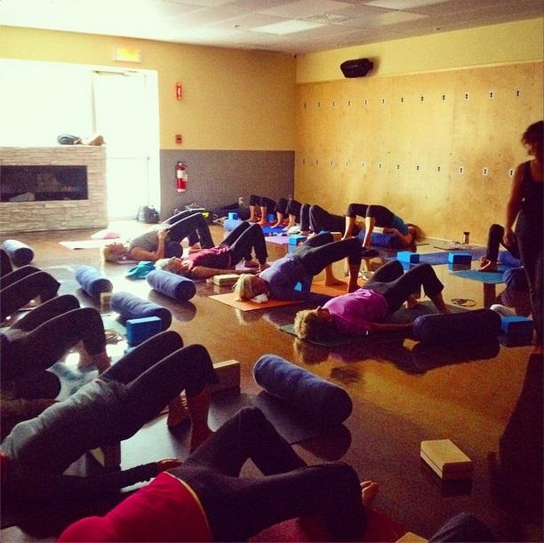 sattva yoga 2.jpg