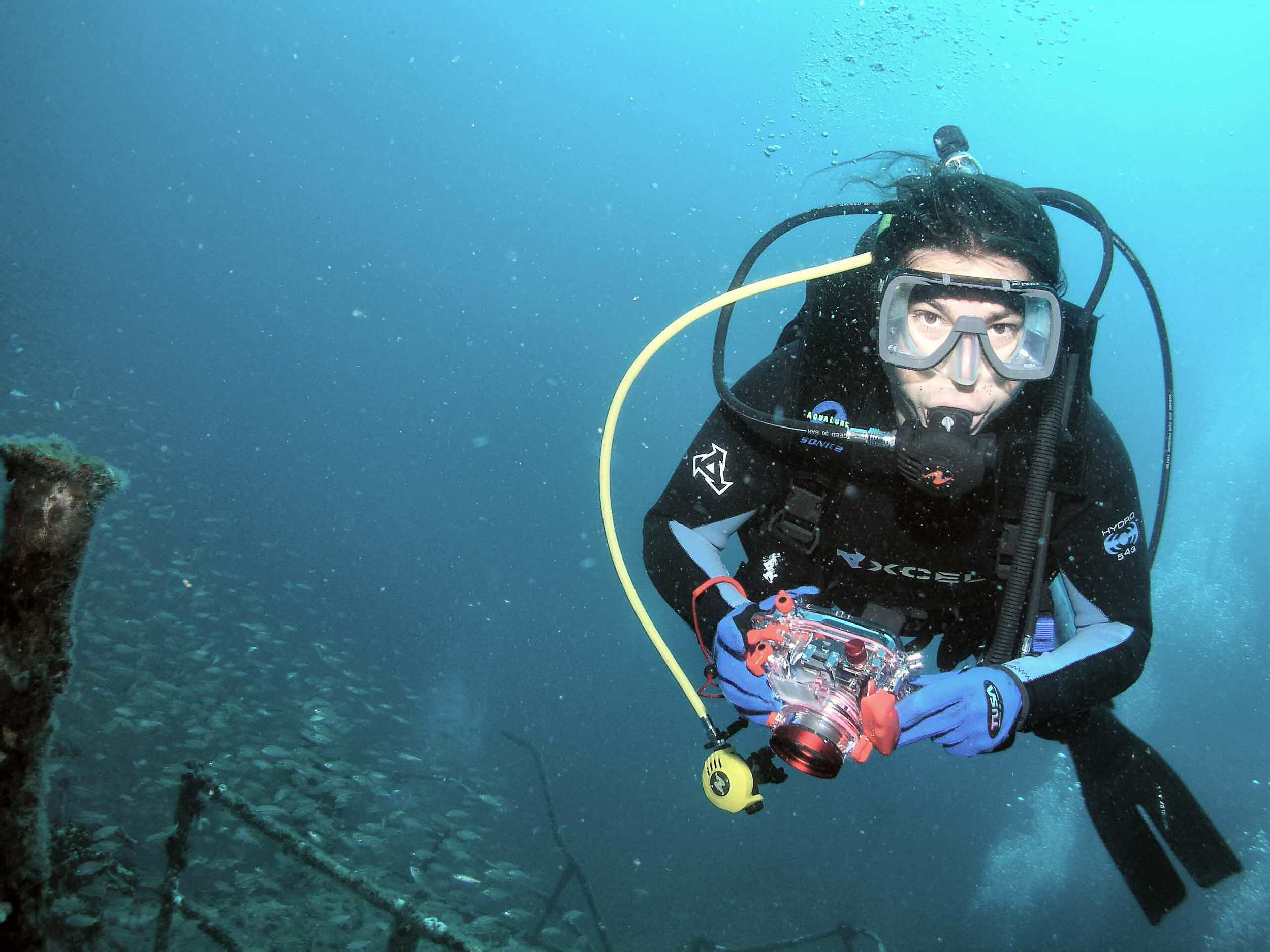 Besides grilling and blending spices, my other passion is to scuba dive. Here I am diving a WWII wreck off Morehead City, NC. German submarines, sand tiger sharks, and lion fish---always plenty to see.