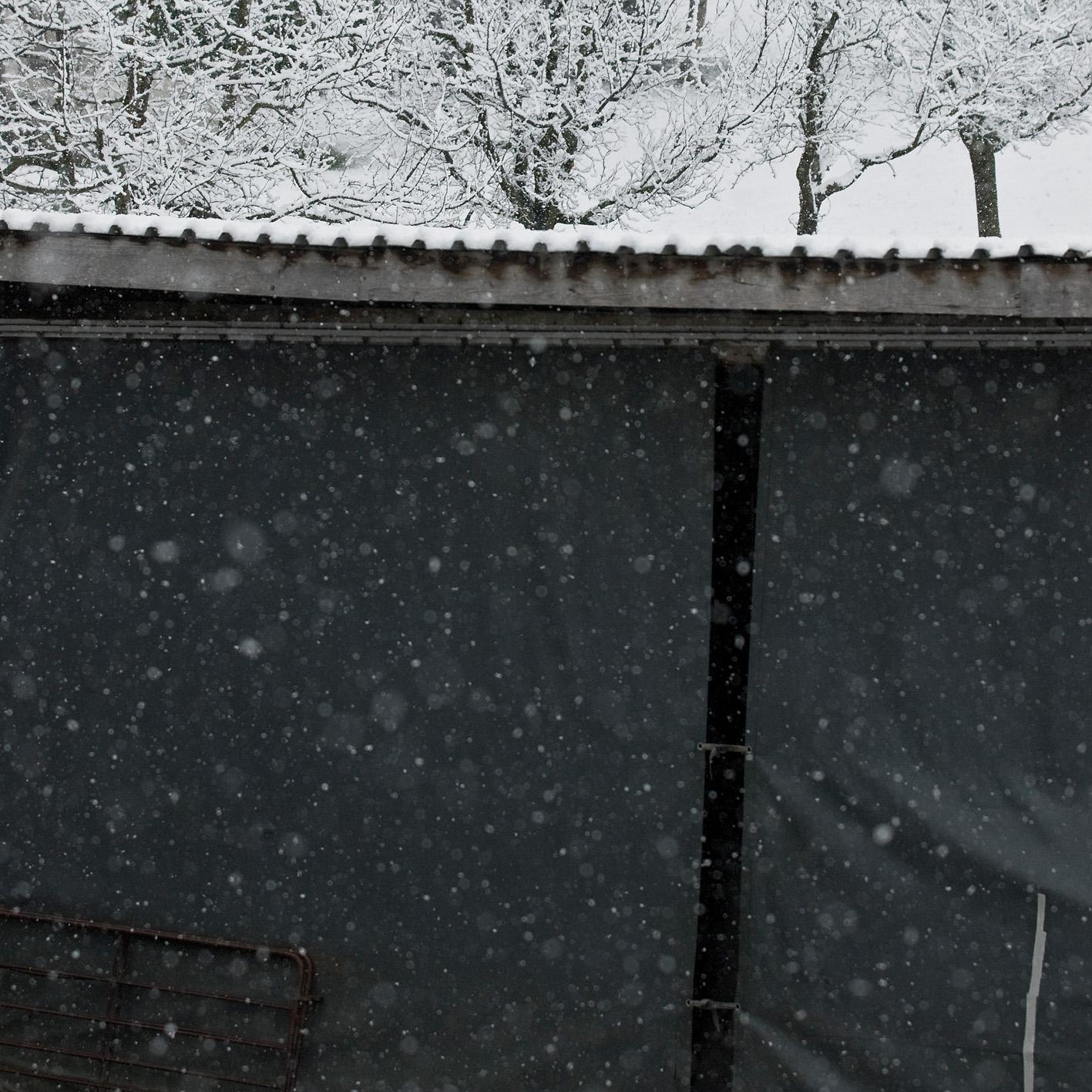 Schaftstall im Winter Schwyz