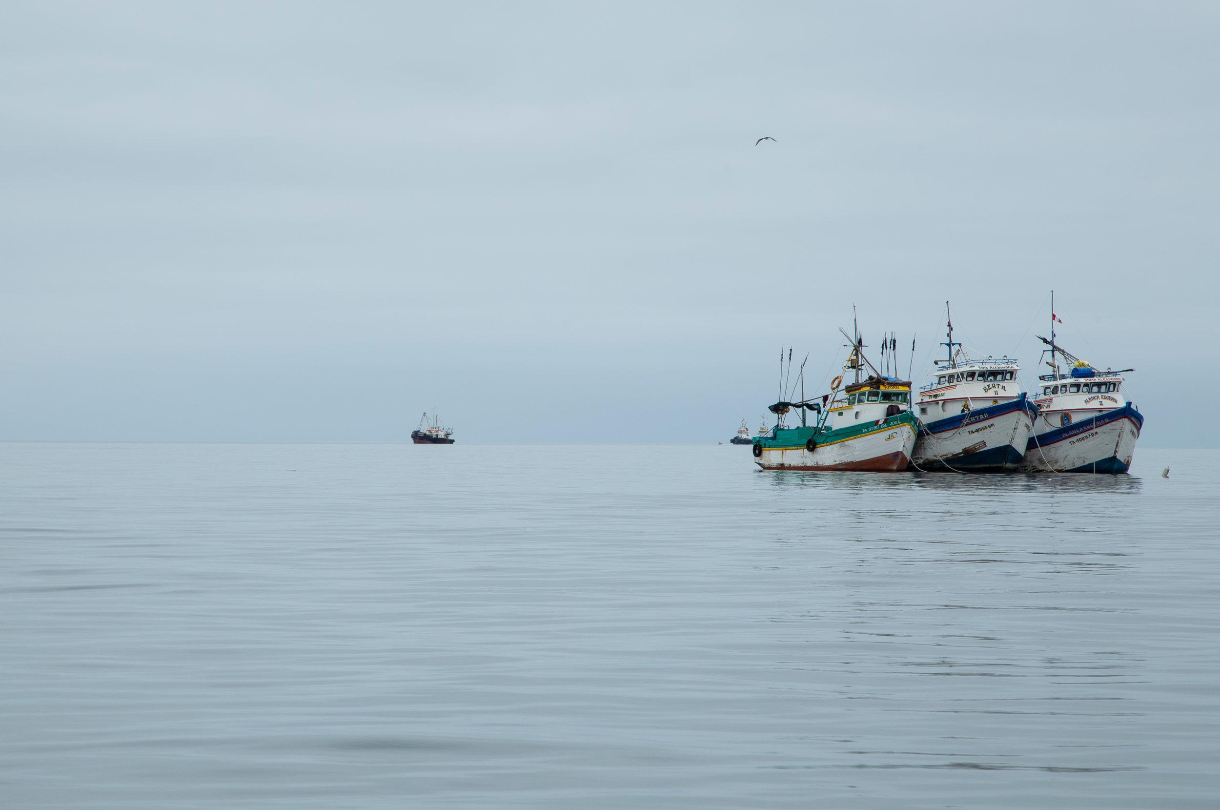 Fishing Boats - Paracas