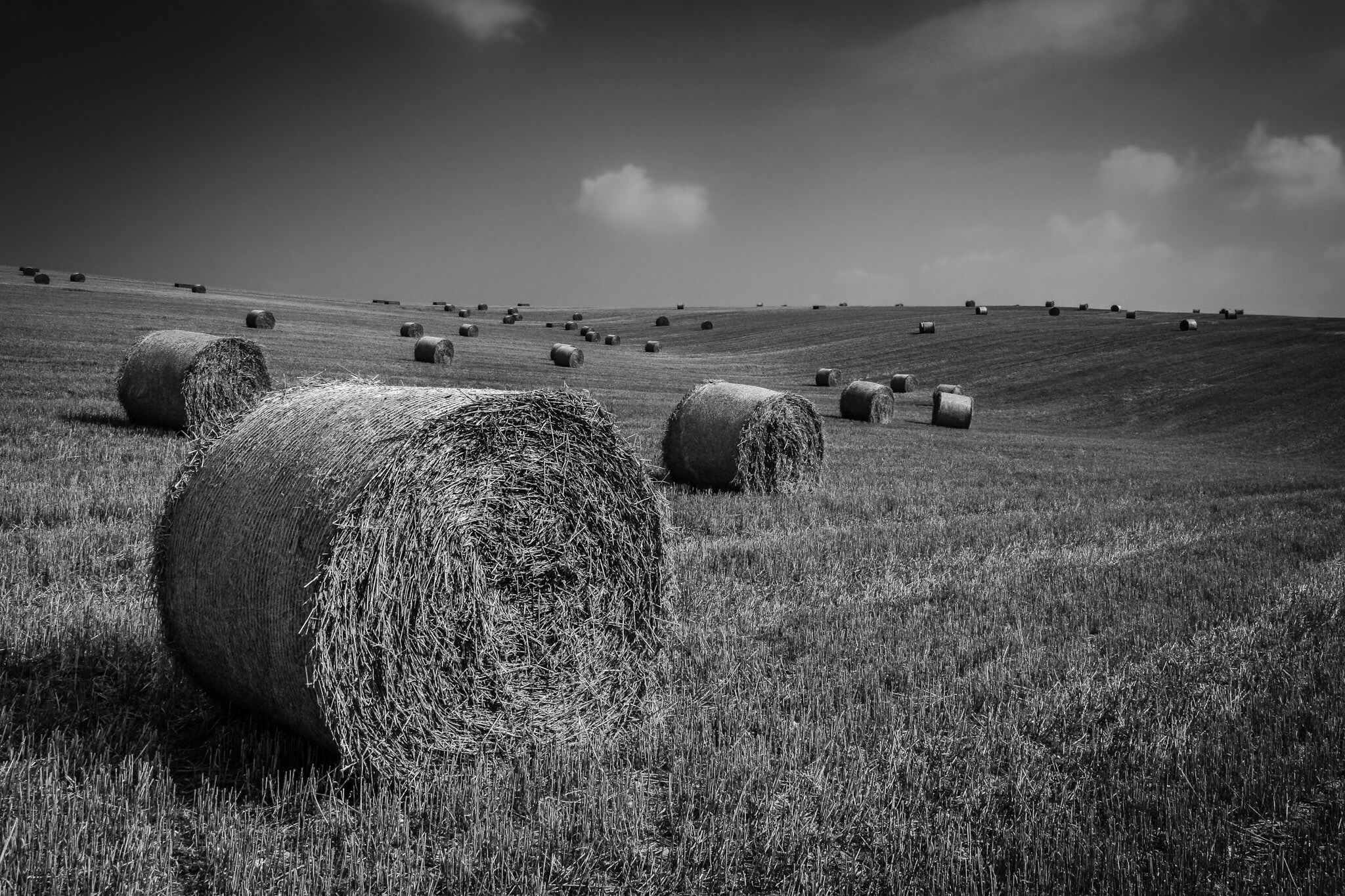 Hay bale, Dorset