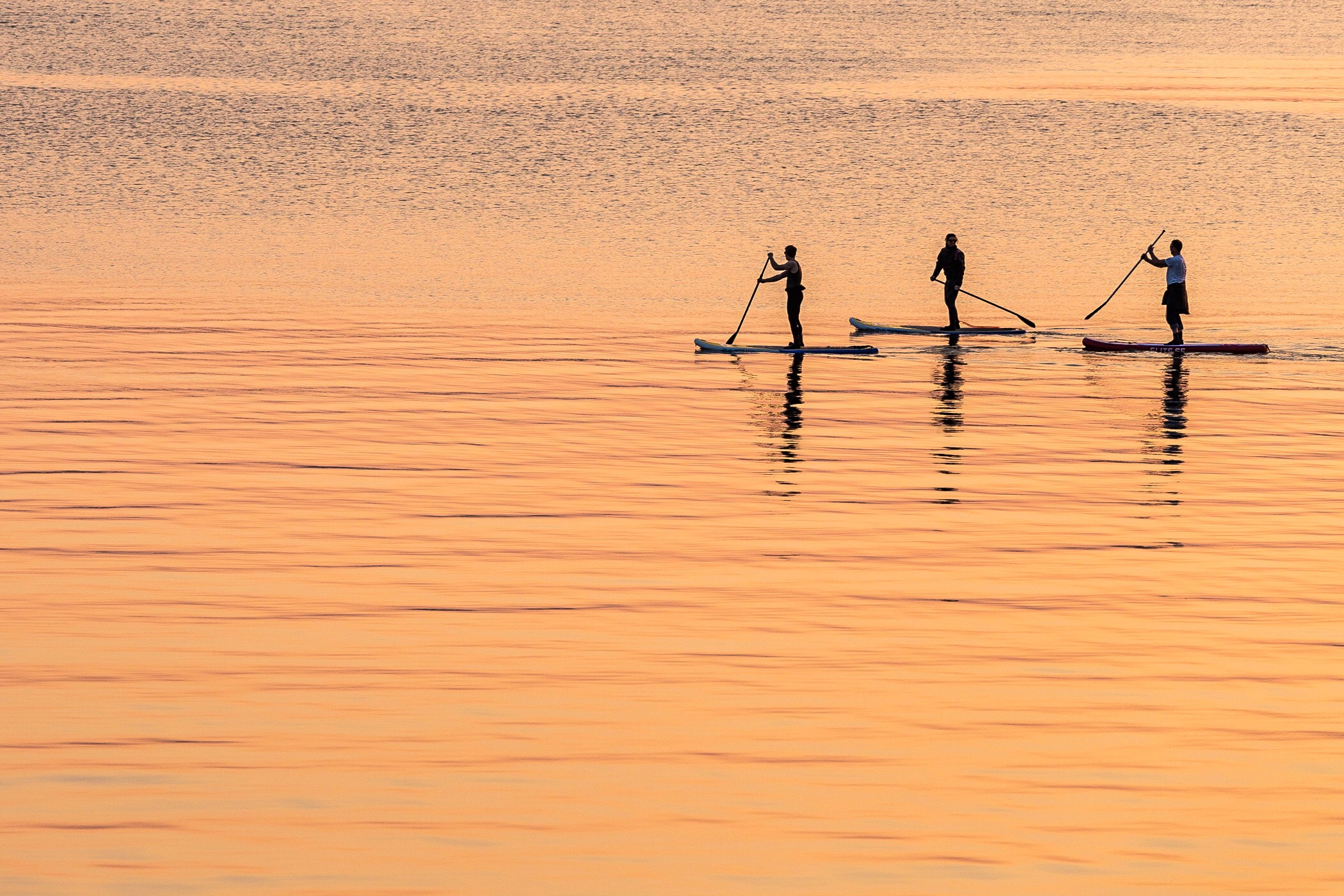 Paddleboarders moving across the water from the Port of Poole to Sandbanks