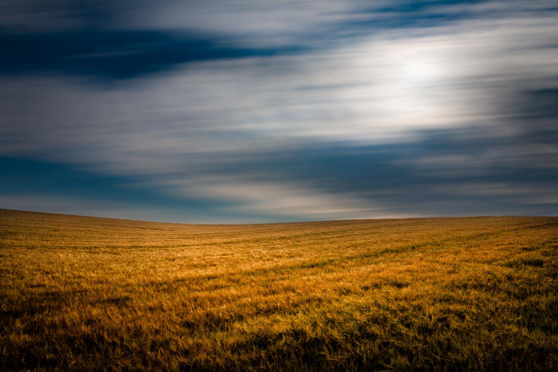Picture of a field, WInterbourne Abbas, Dorset