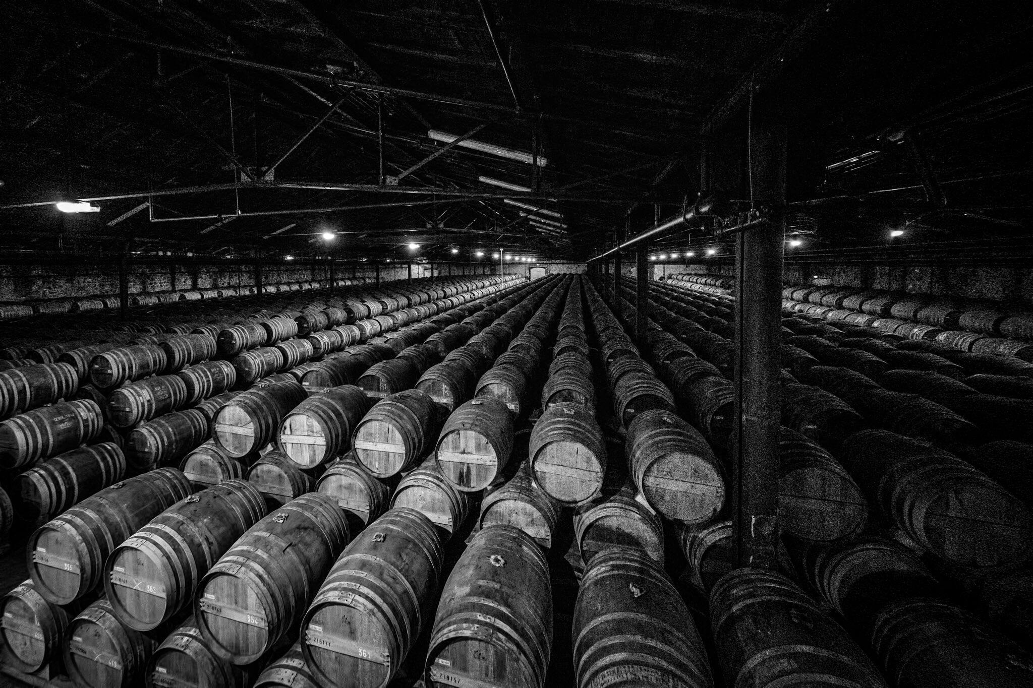 Picture of Barrels in Cognac, France