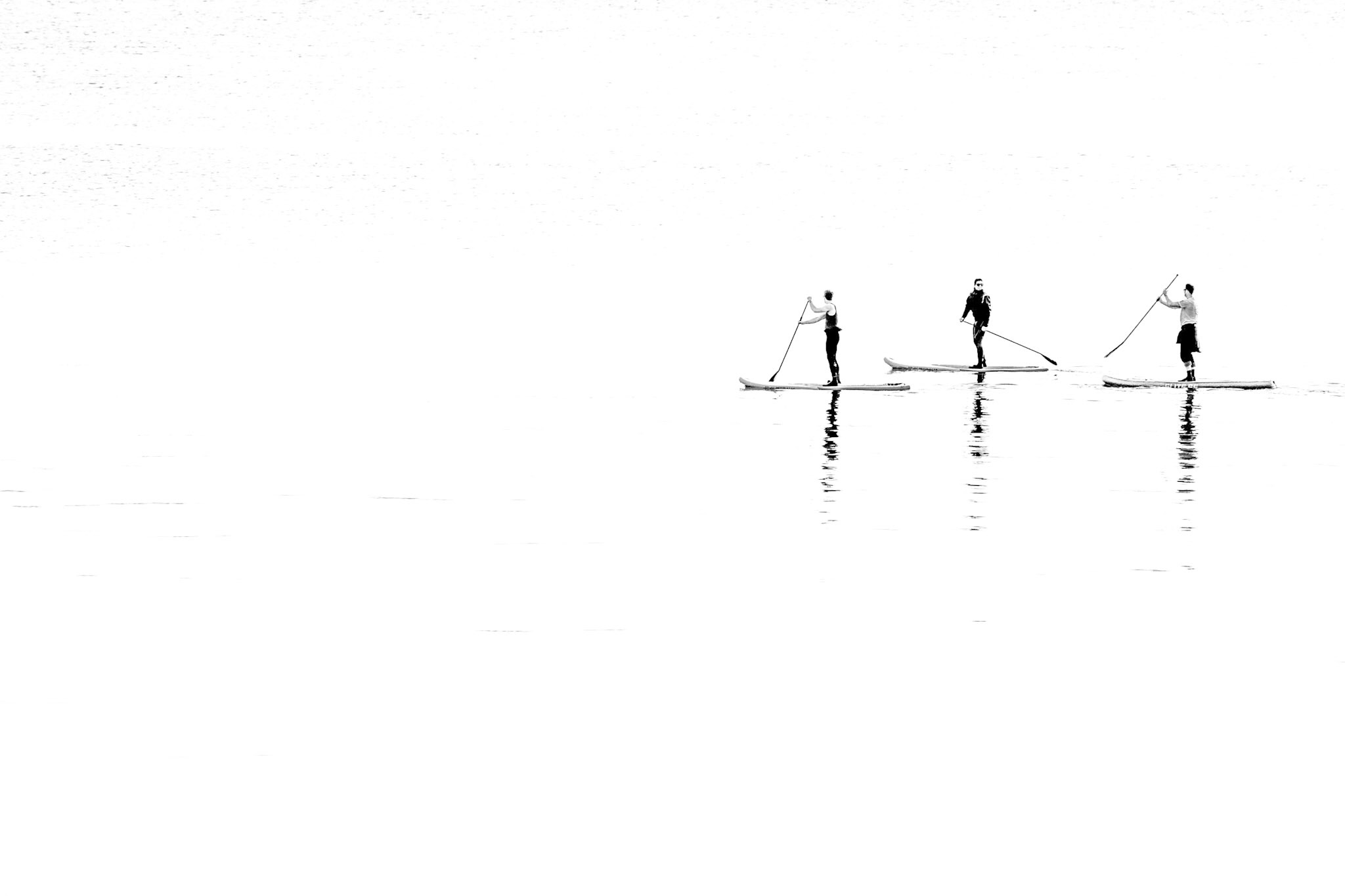 Black and white picture of paddle boarders in Sandbanks