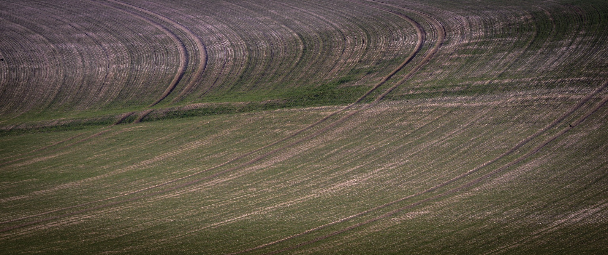 Textures in a field by Rick McEvoy - landscape photographer in Dorset