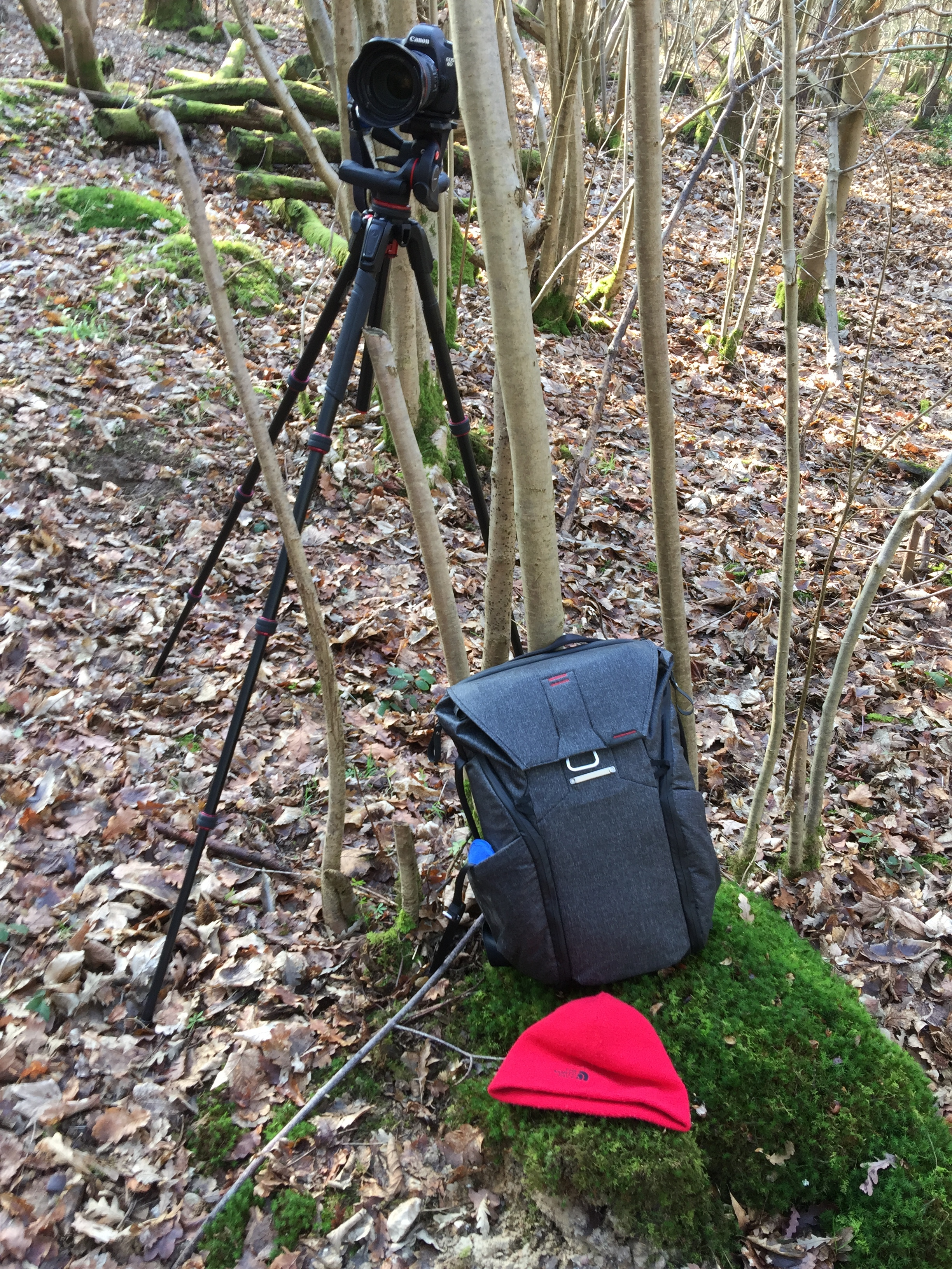 My go to camera gear