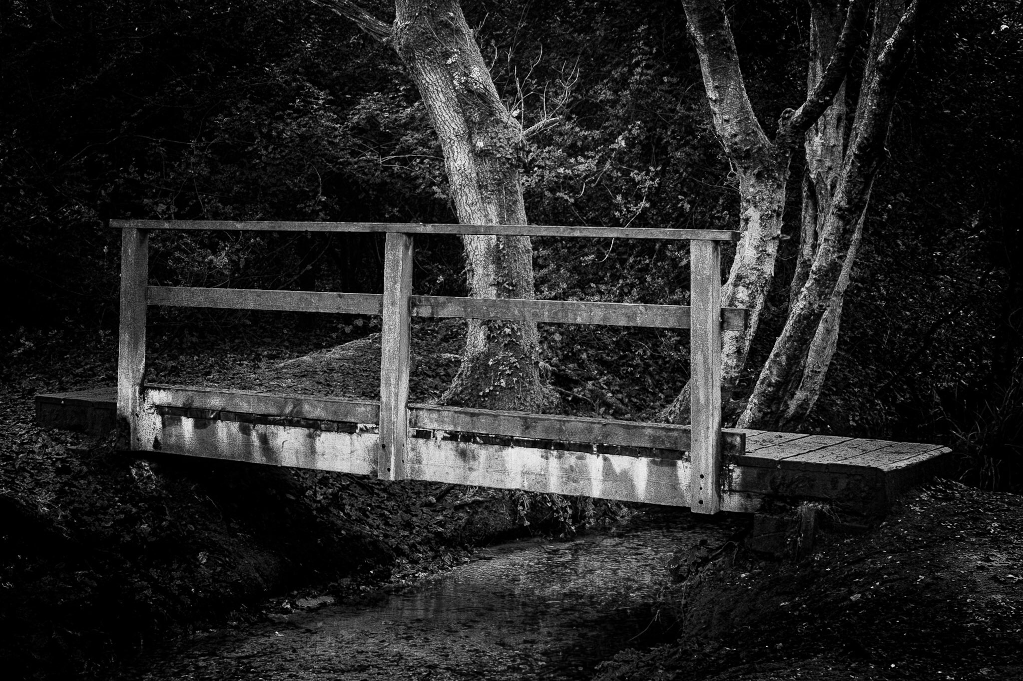 The picture of the footbridge up close in black and white