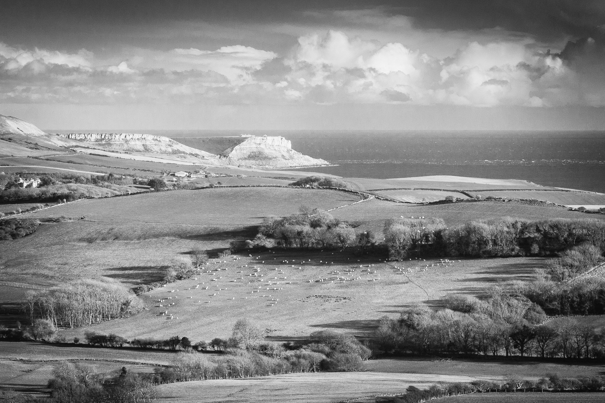 The Dorset landscape in black and white by Rick McEvoy