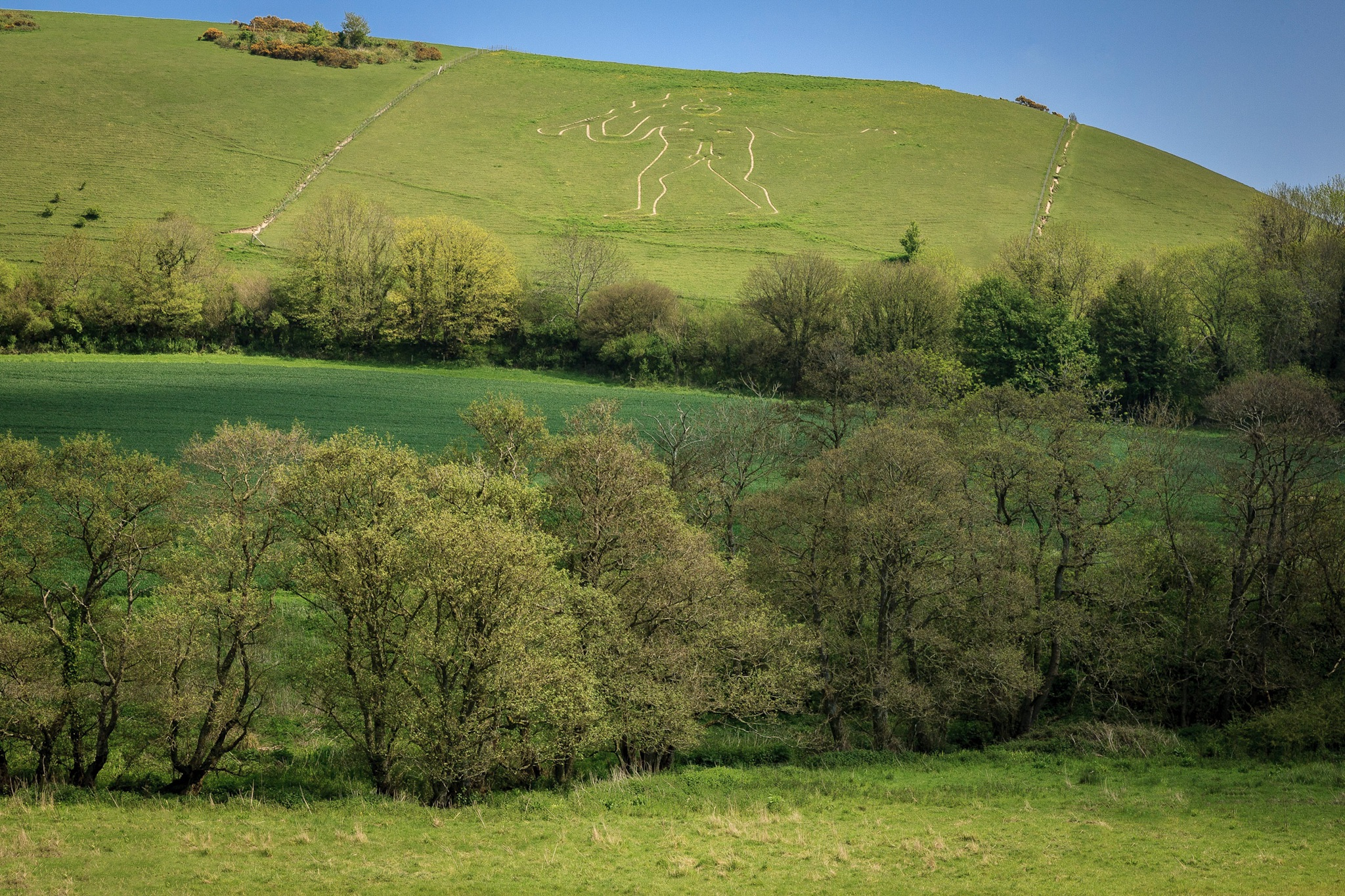 Picture of the Cerne Giant by Rick McEvoy Dorset Photographer