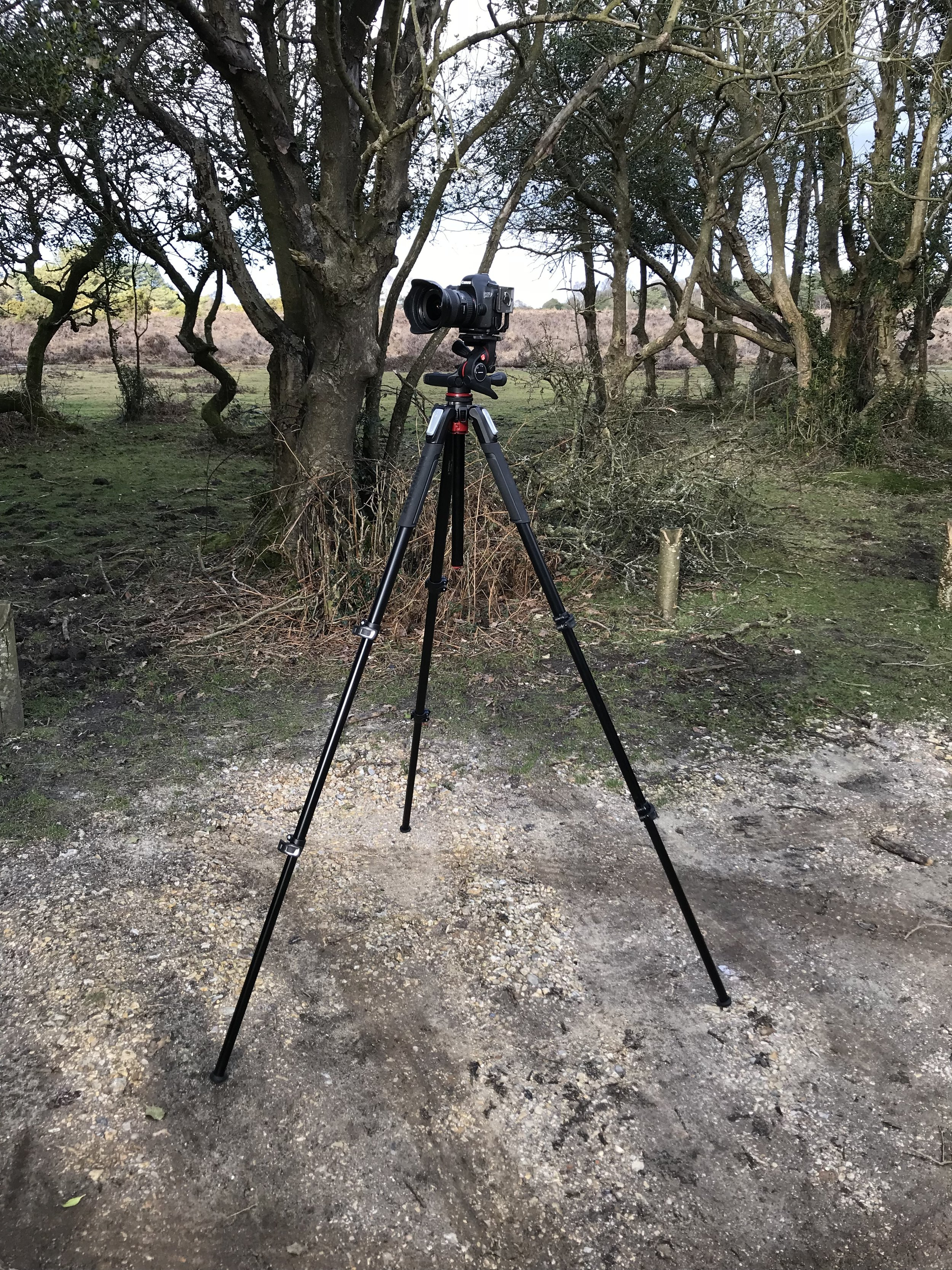 My Canon 6D on my Manfrotto 055 tripod