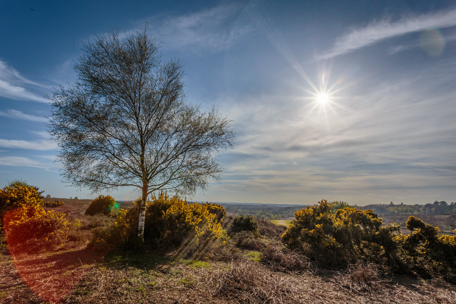 Landscape photography in Hampshire by Rick McEvoy.jpg