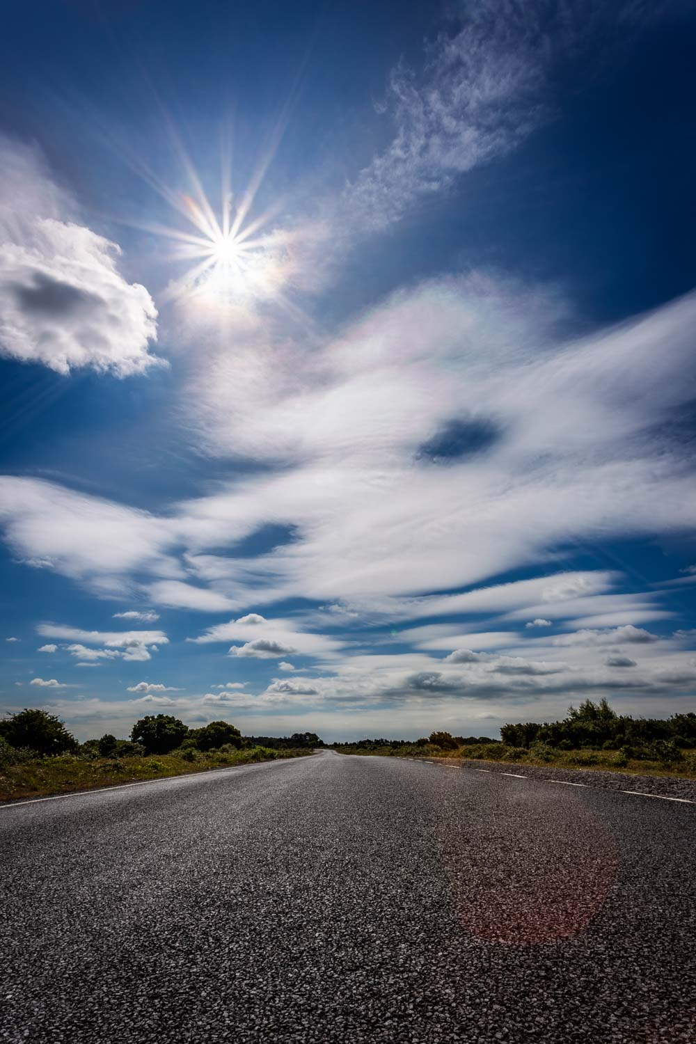 Roadside view of sunshine in the New Forest by Hampshire Photographer Rick McEvoy.jpg
