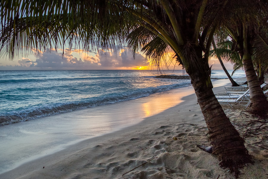 Sunset and palm trees on Dover Beach Barbados