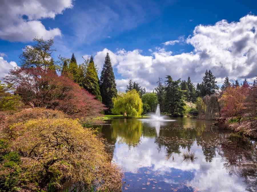 Spring colours in the Van Dusen Botanical Gardens in Vancouver