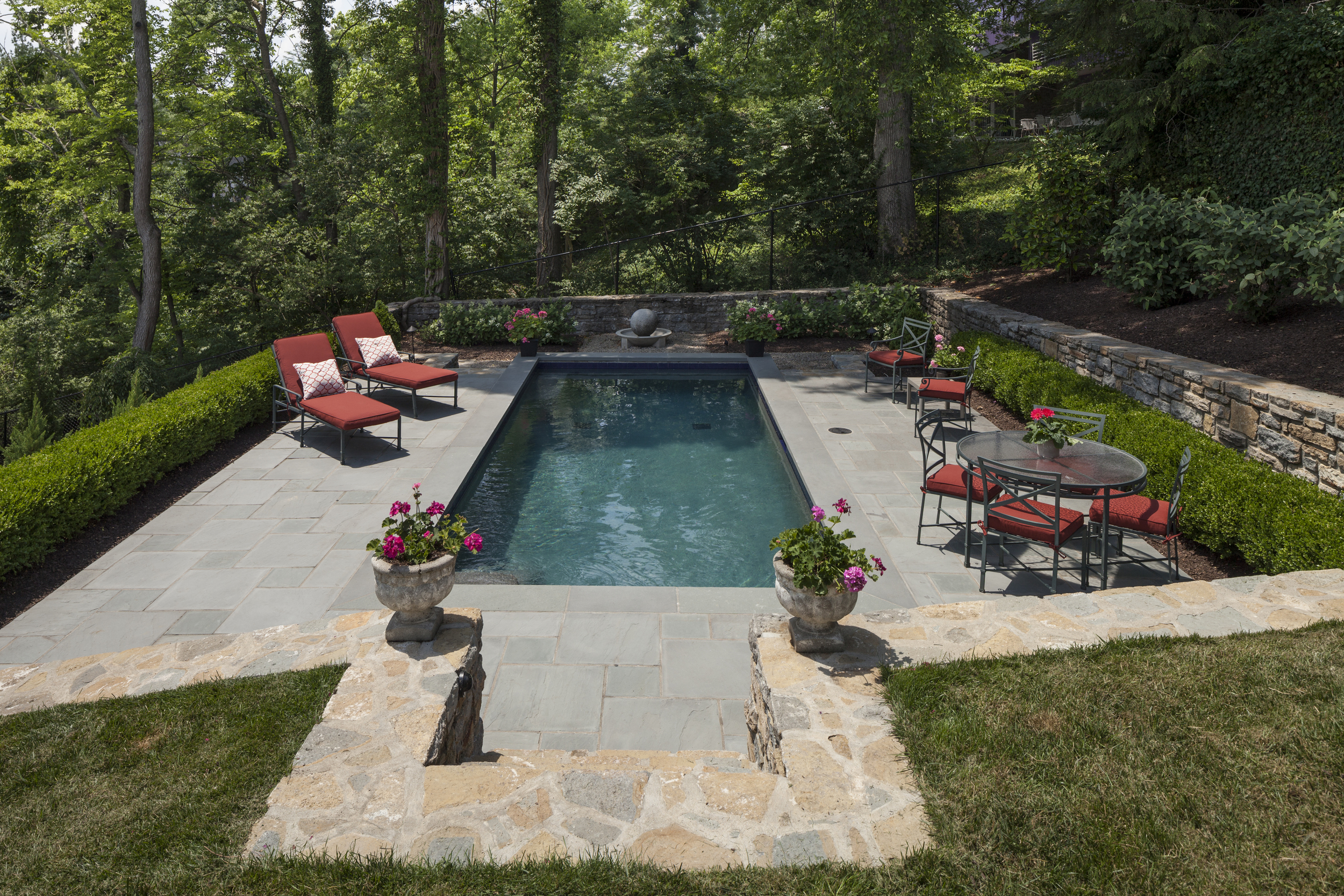 """These clients pointed to a terraced hillside and said """"Can we have a pool?"""" and DIGS said 'Why not!"""" Note: this boxwood hedge is acceptable per building codes in lieu of the mandatory fence."""