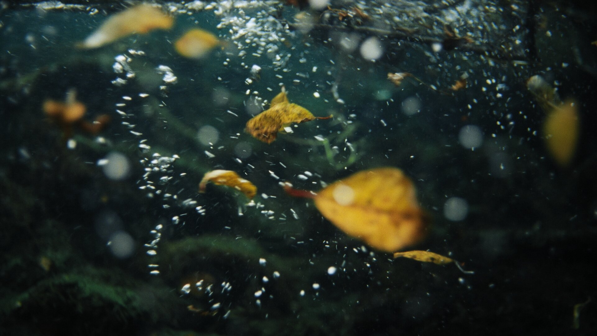 Rising Water_1.1.43.jpg