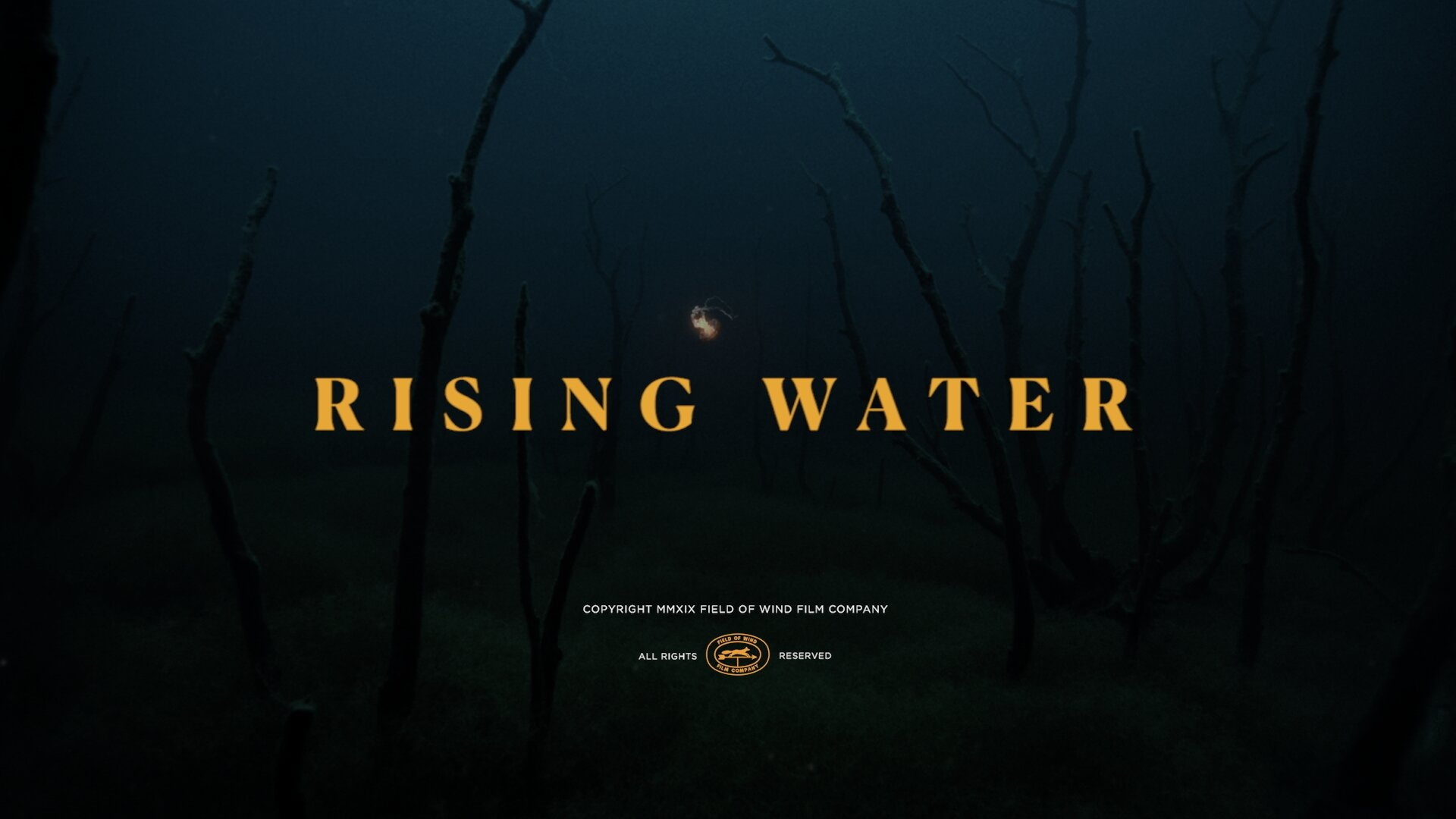 Rising Water_1.1.114.jpg