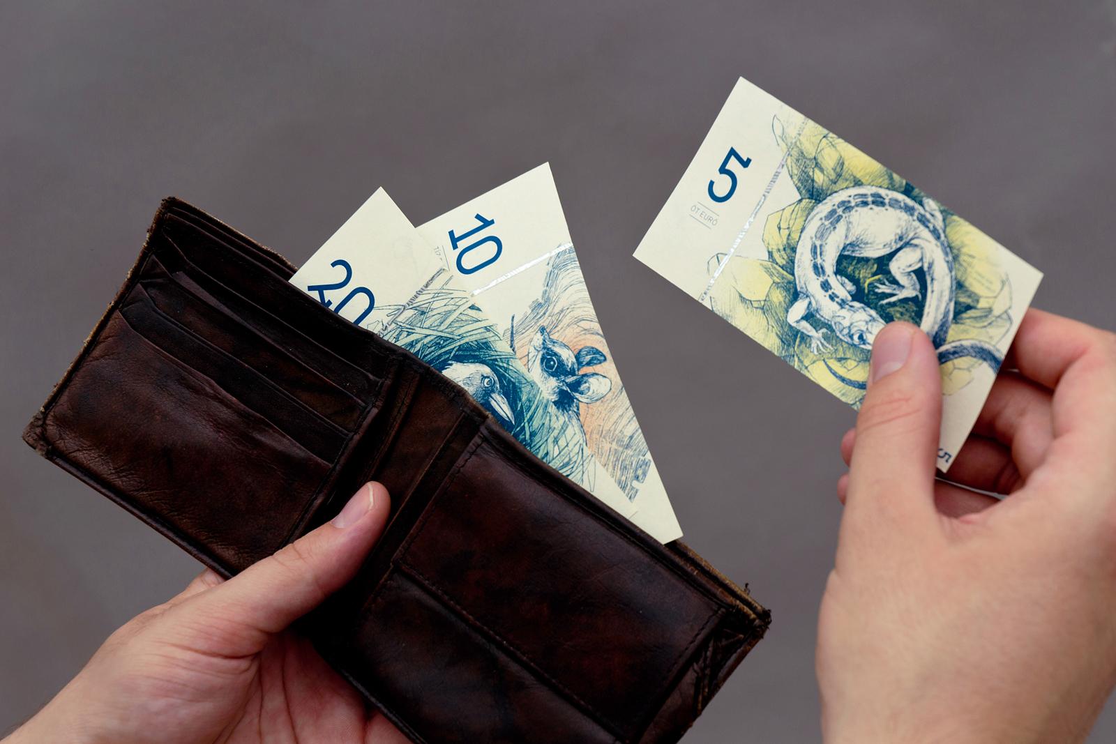 Hungarian Euro by Barbara Bernát 02.jpg