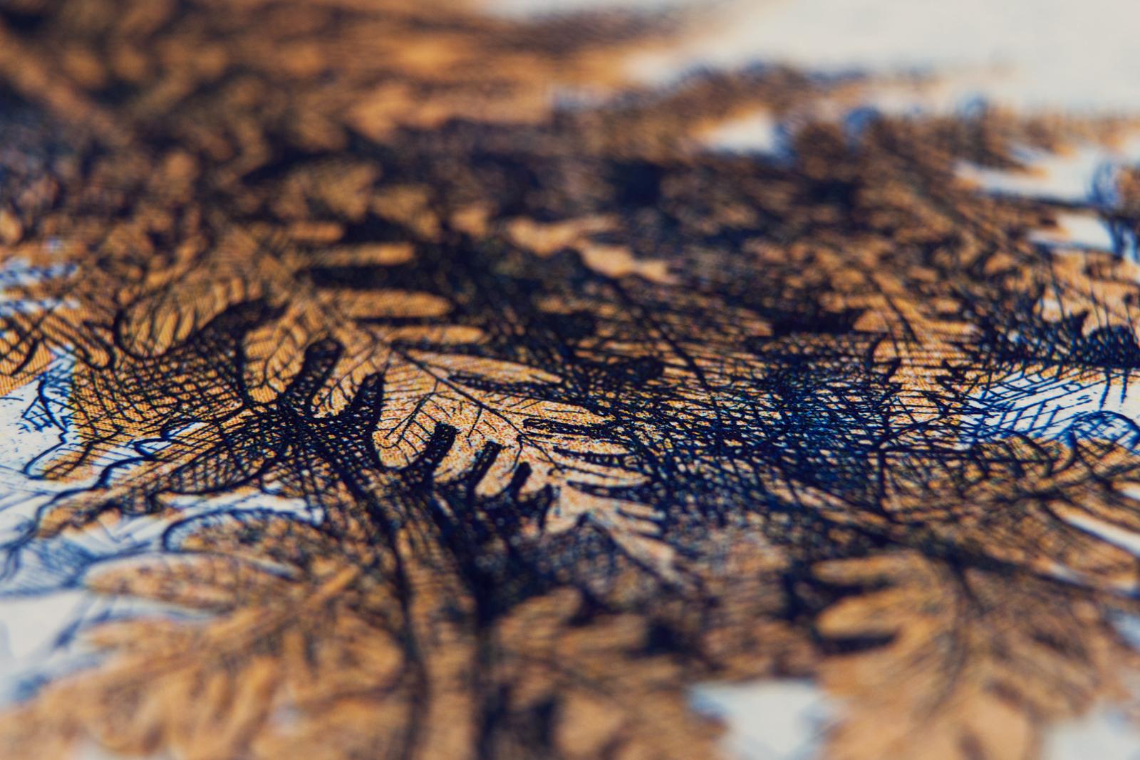 Hungarian Euro by Barbara Bernát 11.jpg