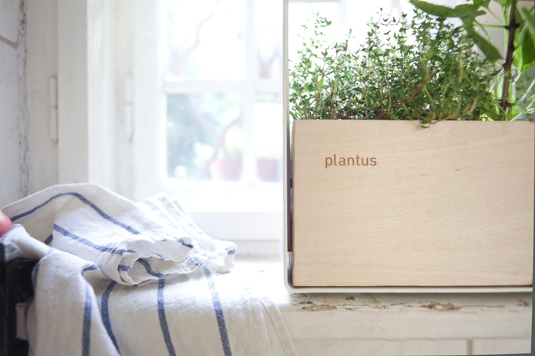 Indoor urban gardening - Plantus planters 02.jpg