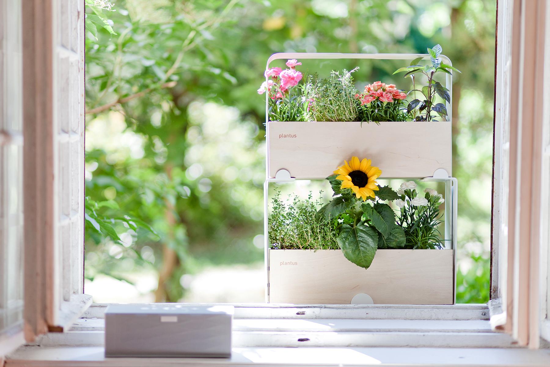 Indoor urban gardening - Plantus planters 04.jpg