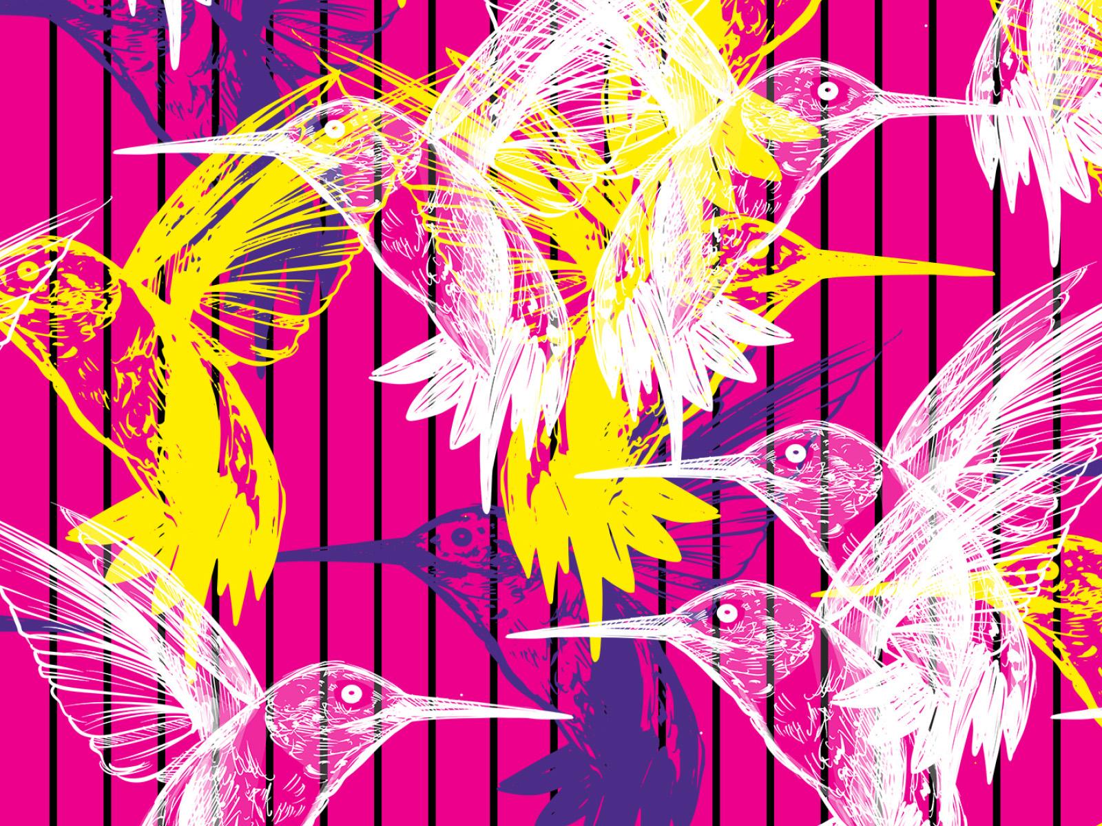hummingbird pink borító.jpg