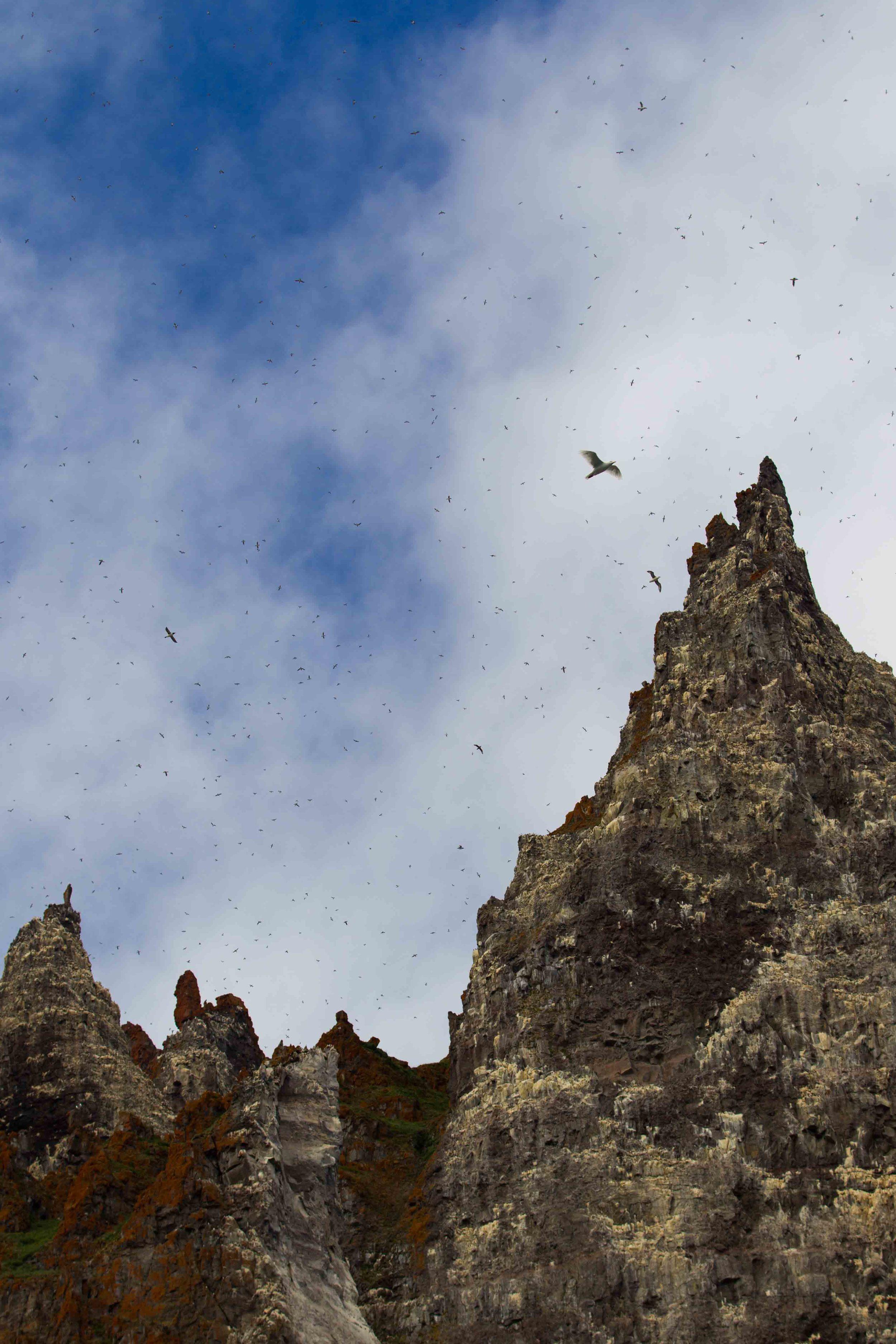 2014-08 Baffin_Island_site-7-2.jpg