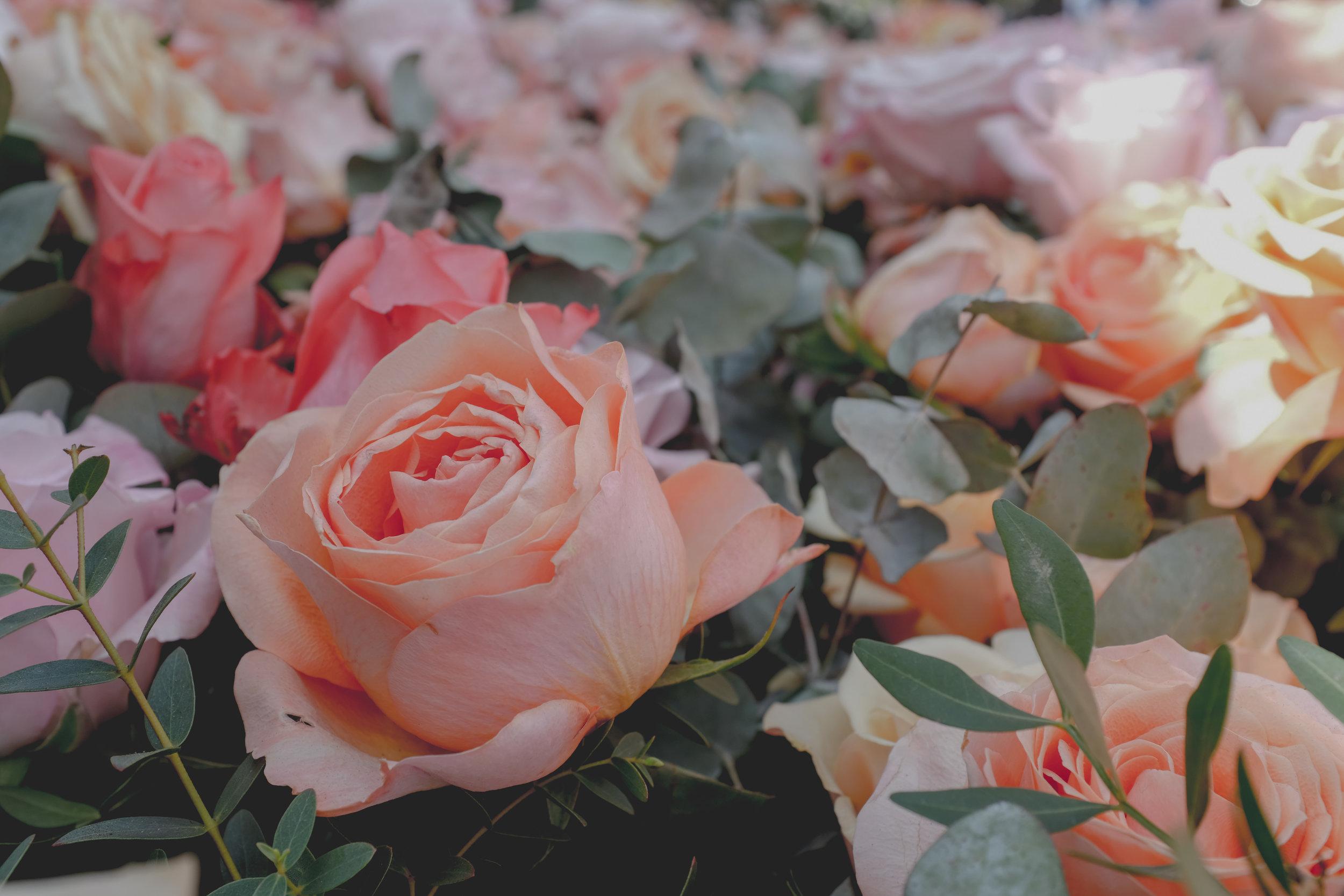 2019-05-23 Chelsea flower show-49.jpg