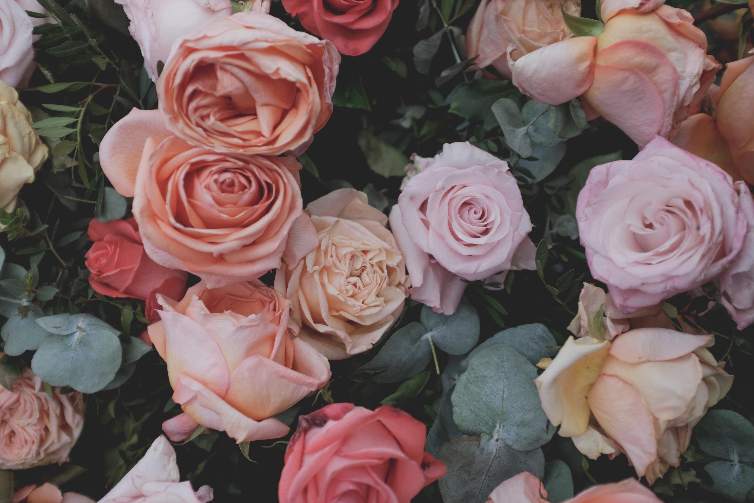 2019-05-23 Chelsea flower show-51.jpg