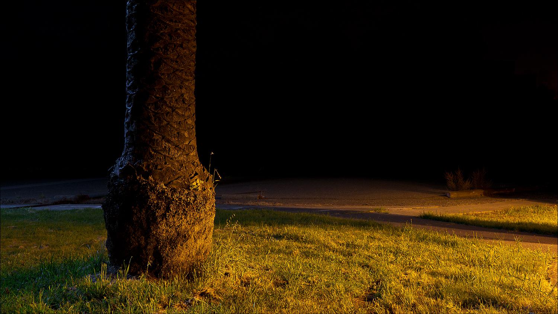 Jim Vecchi - Crystal Silence - 08.jpg
