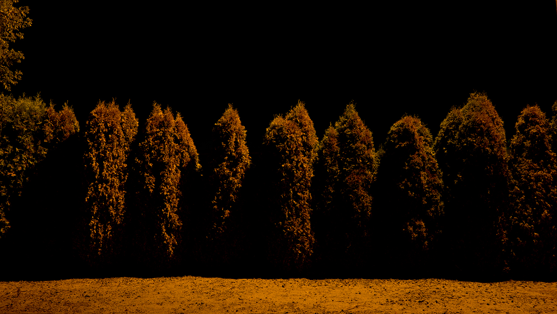 Jim Vecchi - Crystal Silence - 30.jpg