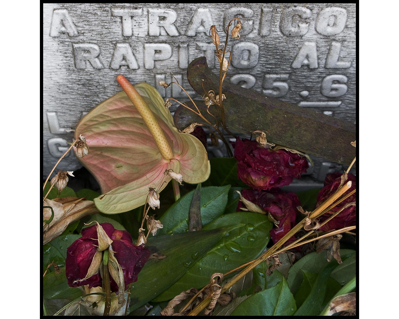 Jim Vecchi - Memoria Scaduta - 41.jpg