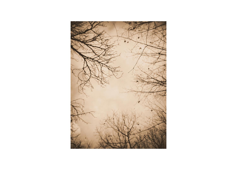 Winter-Vecchi-02.jpg